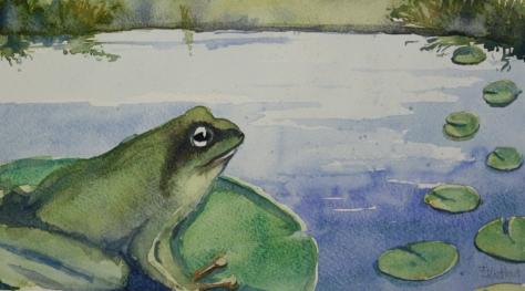 frogfeat