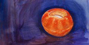 tangerine lantern